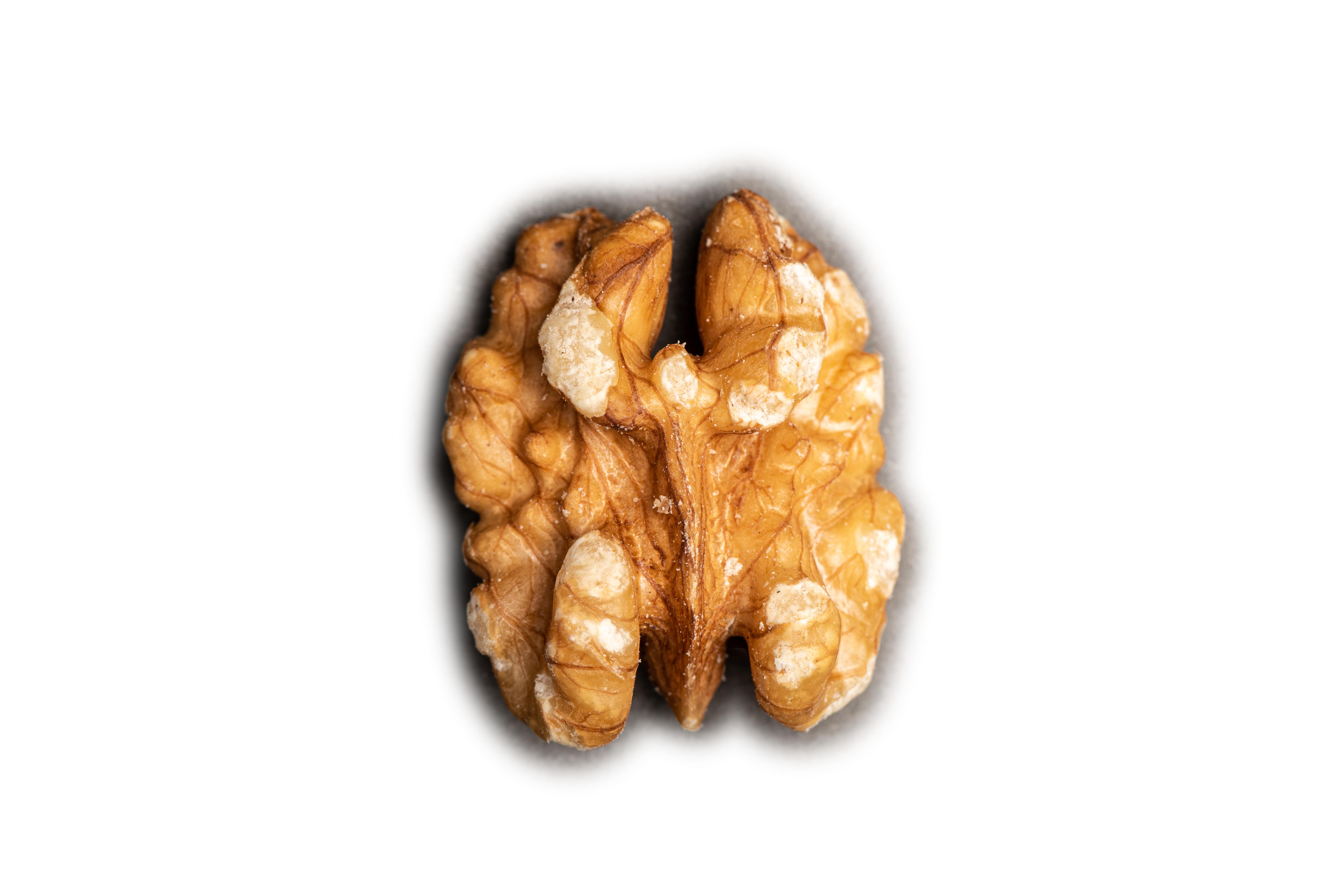 Nut-1