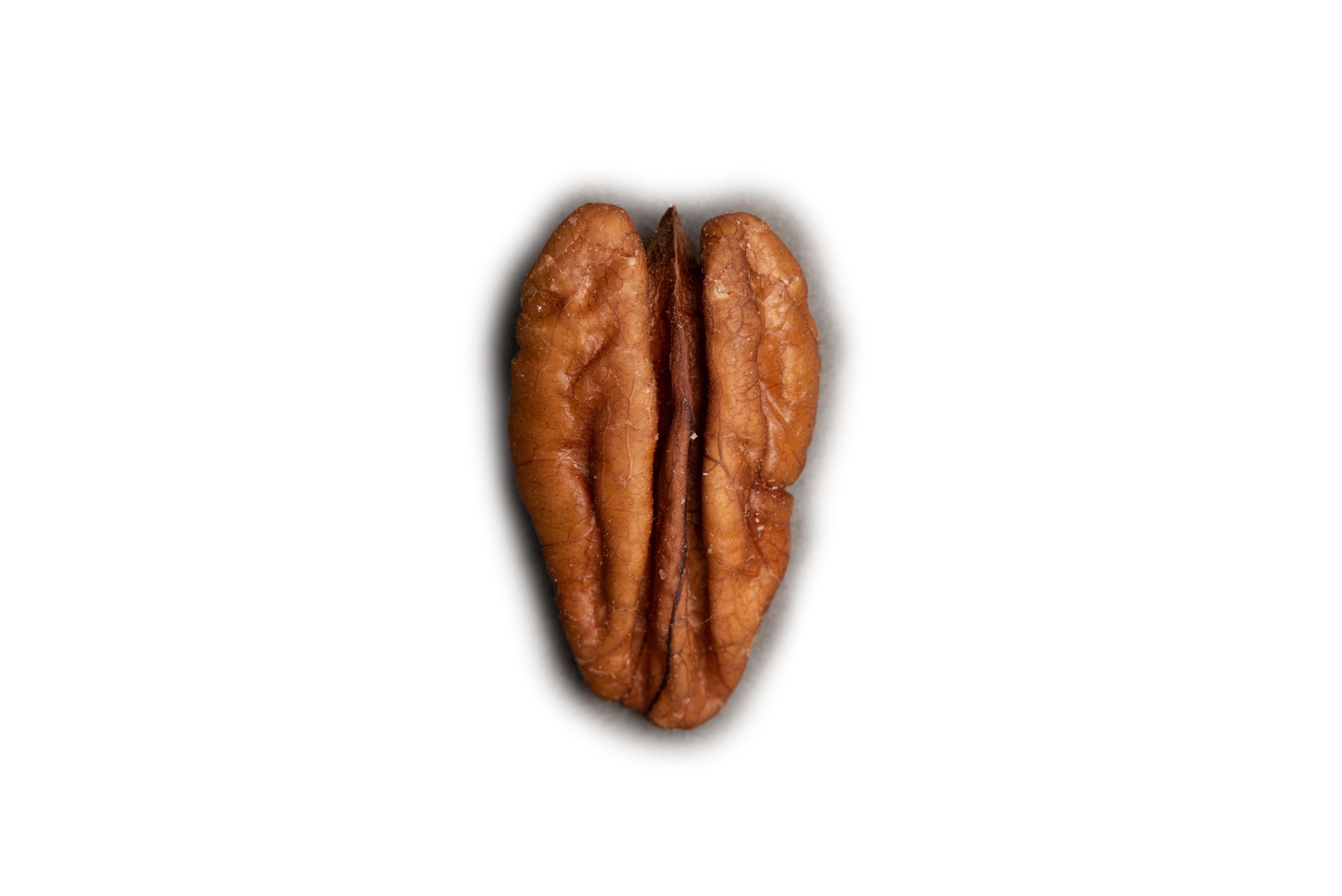 Nut-4