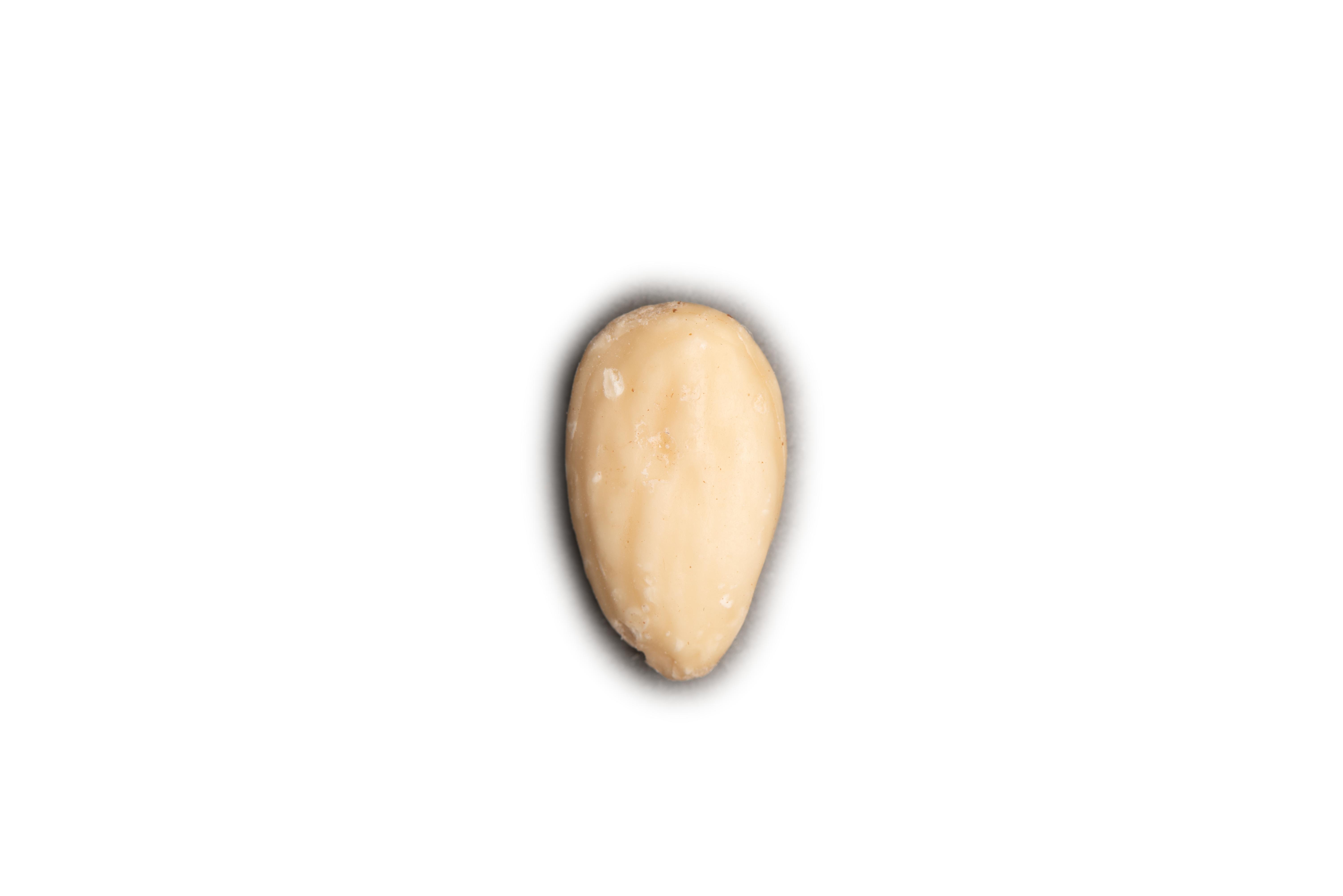 Nut-5