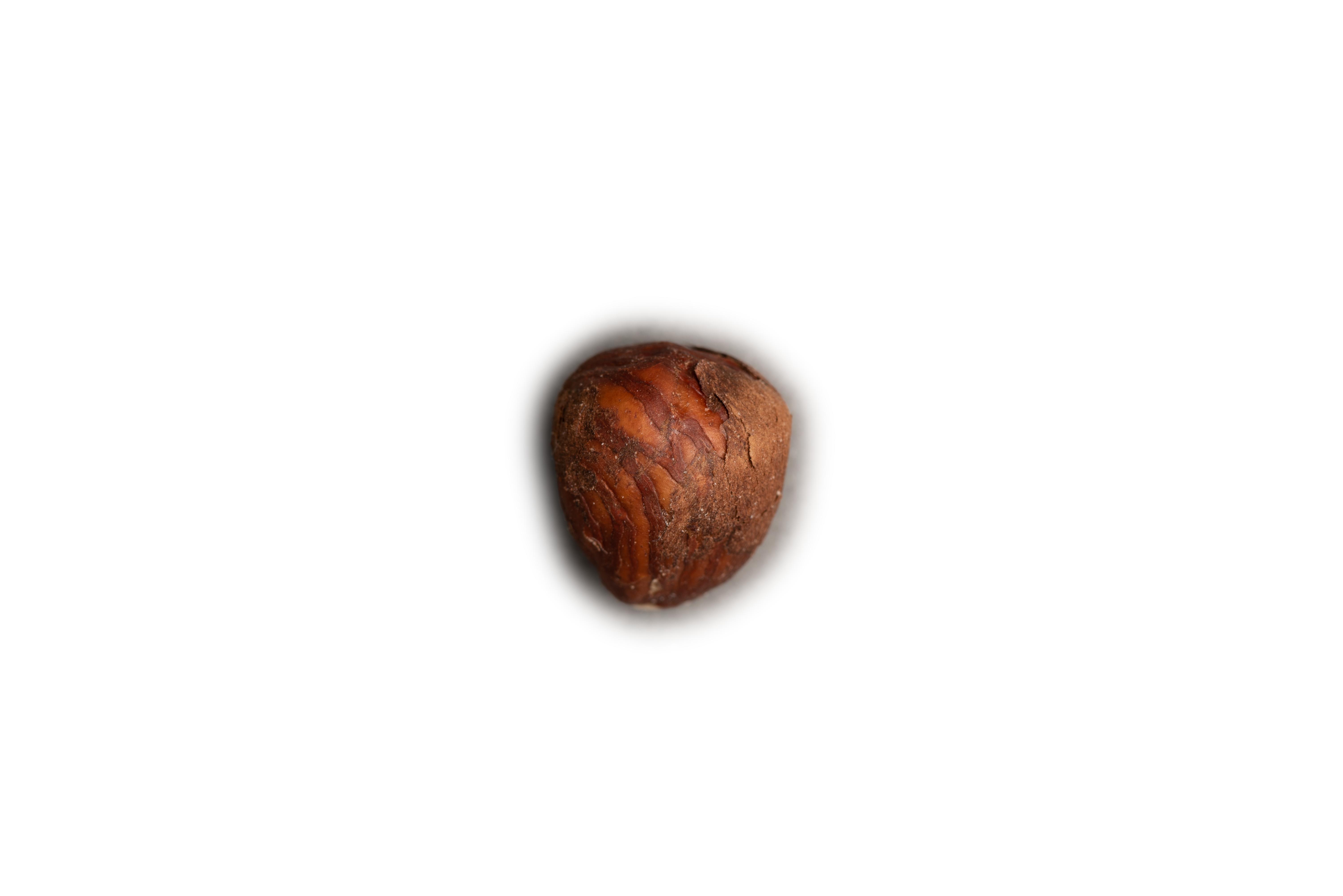Nut-6